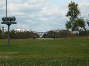 i see you president-elect Barack Obama!